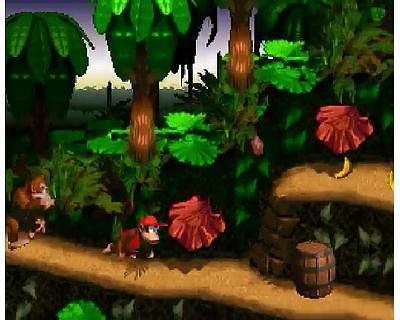 スーパードンキーコングのゲーム画面