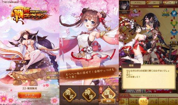 戦姫コレクションの画像